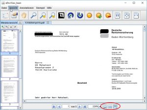 "Documents presented in different display modes such as ""One Page"", ""Two Page"" or ""Continuous""."
